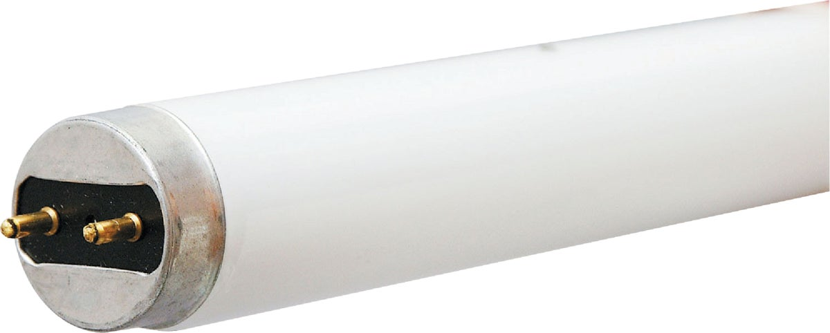 Leviton 14W//15W//20W 2-Pin T8 Fluorescent Starter Pack 10