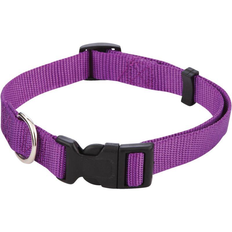Westminster Pet Ruffin' it Dog Collar Purple/Pink/Blue