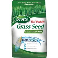 Scotts Turf Builder Tall Fescue Mix Grass Seed
