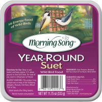 Morning Song Hi-Energy Suet (Pack of 12)