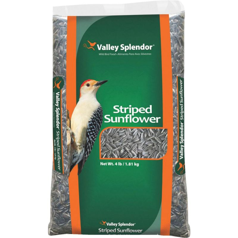 Valley Splendor Striped Sunflower Seed 4 Lb.