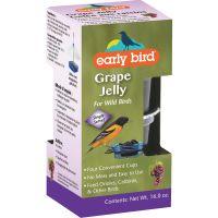Early Bird Grape Jelly Oriole Food