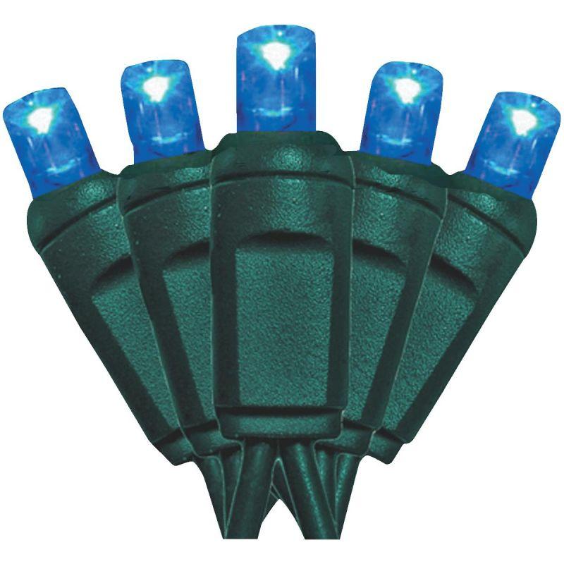 J Hofert Blue100-Bulb M5 LED Light Set