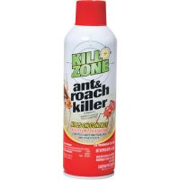Regent Products Roach & Ant Killer (Pack of 12)