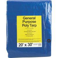 General Purpose Blue Poly Tarp