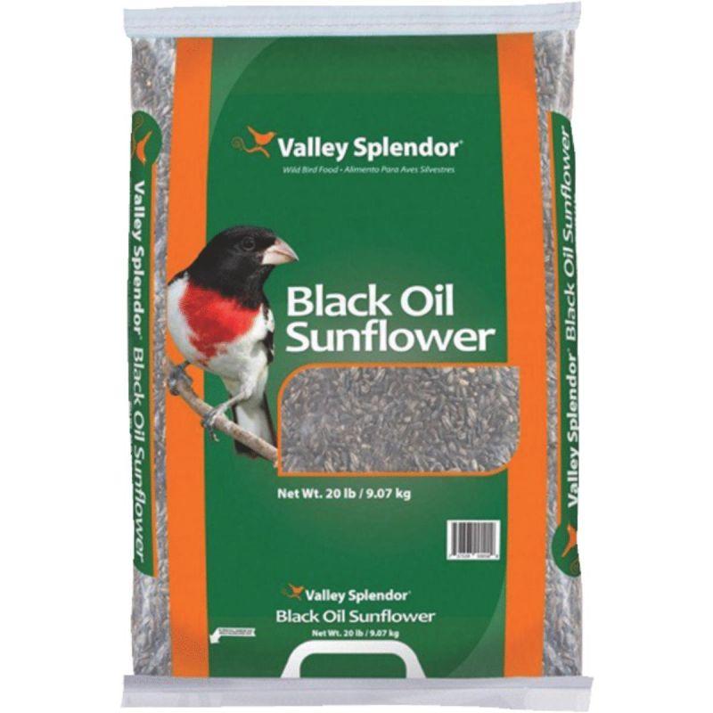 Valley Splendor Black Oil Sunflower Seed 20 Lb.